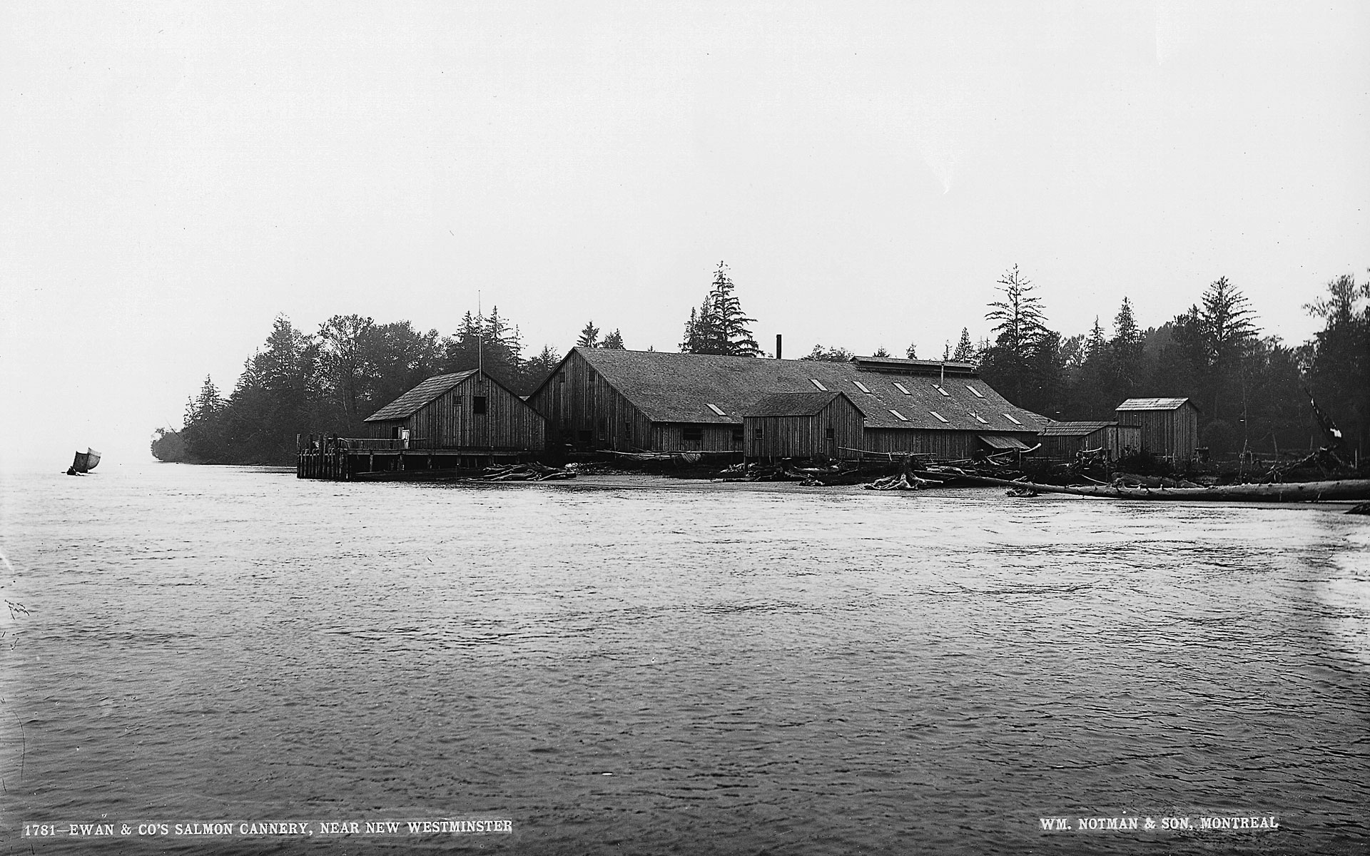 Cannery buildings in the distance with the Fraser River in the foreground.