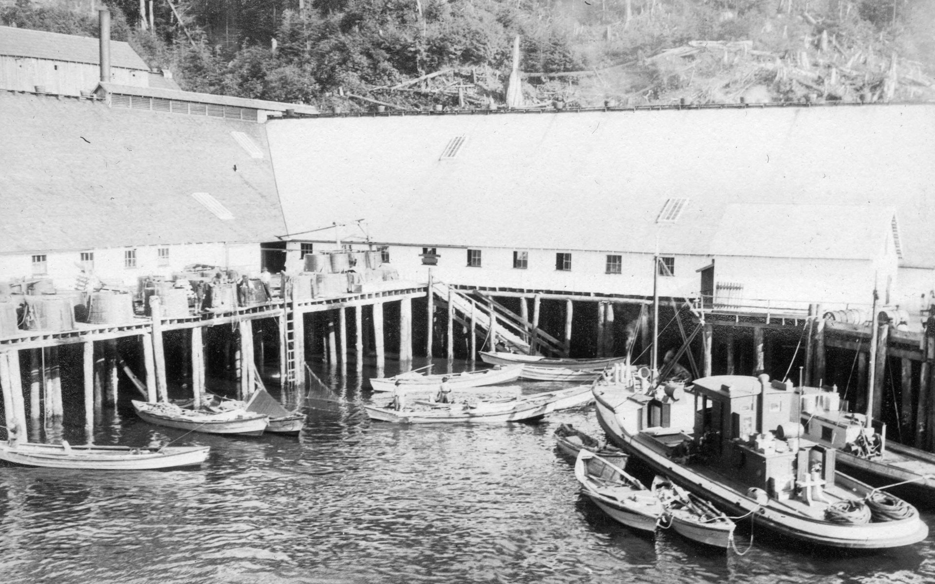 Good Hope Cannery with boats moored at the docks and net barrels on the wharf.