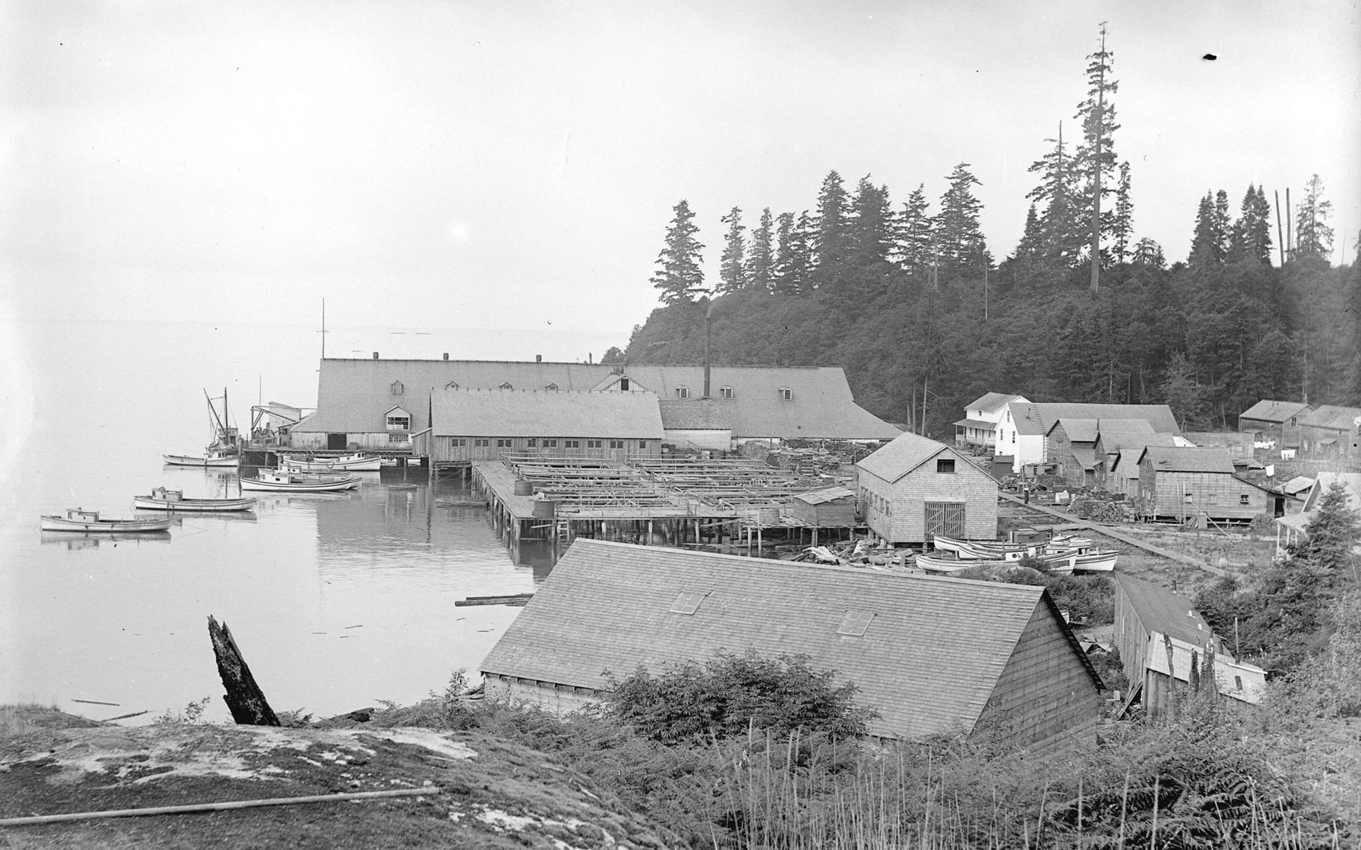 Cannery buildings, wharves and boats.