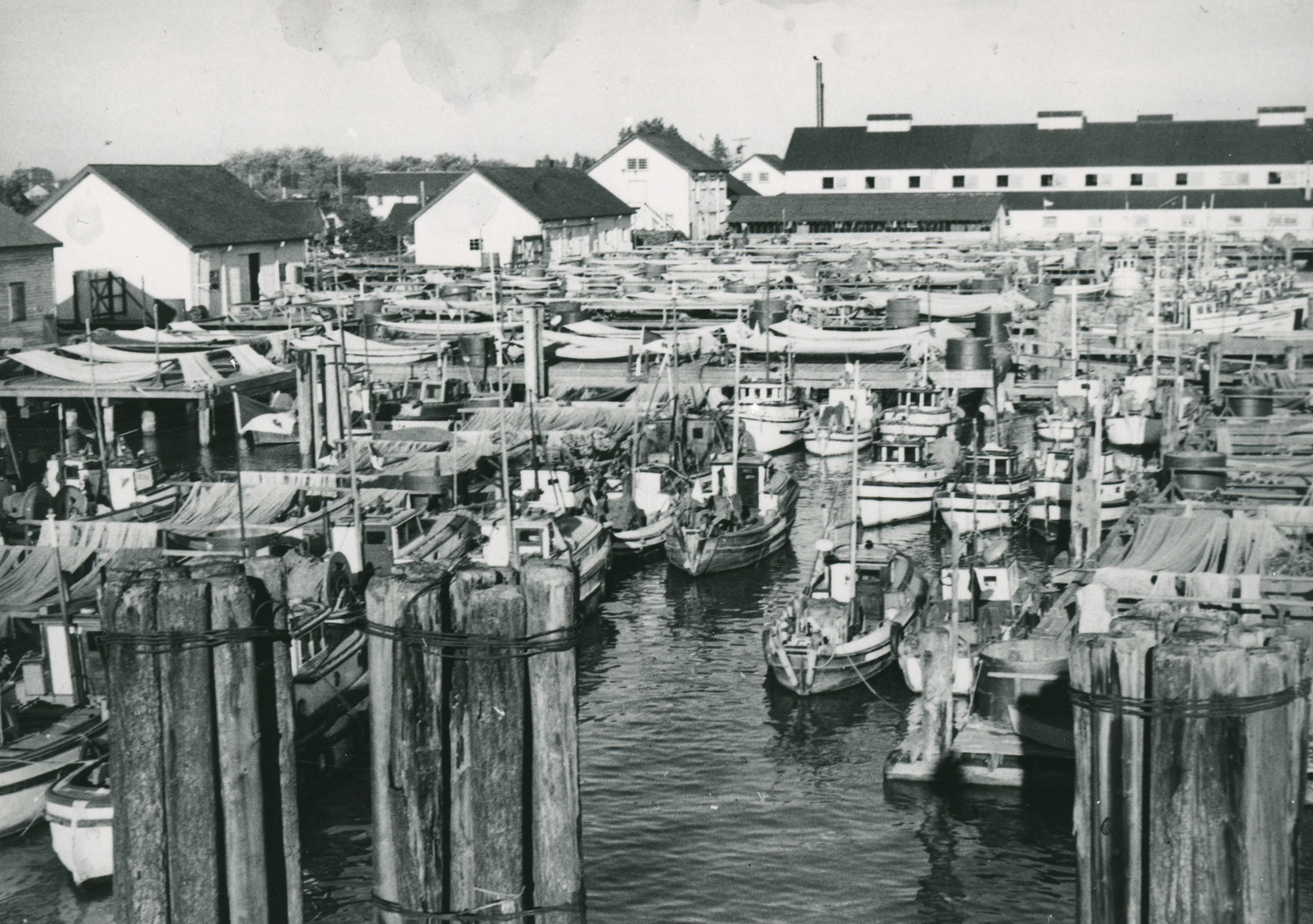 Many fishing boats and racked nets are visible in the harbour. Gulf of Georgia Cannery buildings in the background.