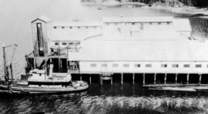 Aerial view of Hecate Cannery with main cannery building on pilings and a packer boat docked along side.