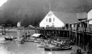 Mill Bay Cannery buildings on pilings above the Nass River with many small fishing vessels at the wharf.