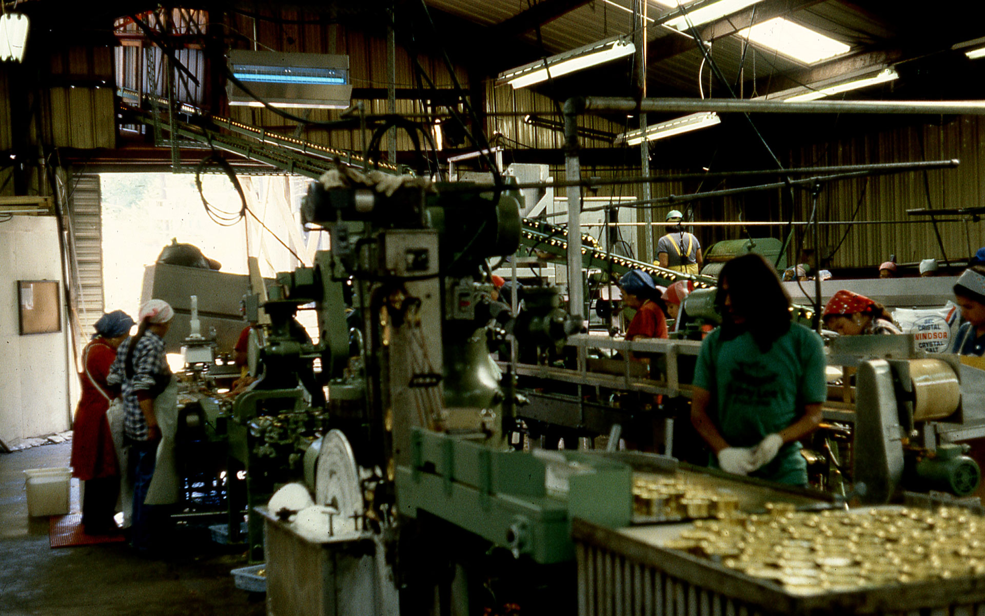 Interior of a modern, mechanized canning line with several workers at different stations.
