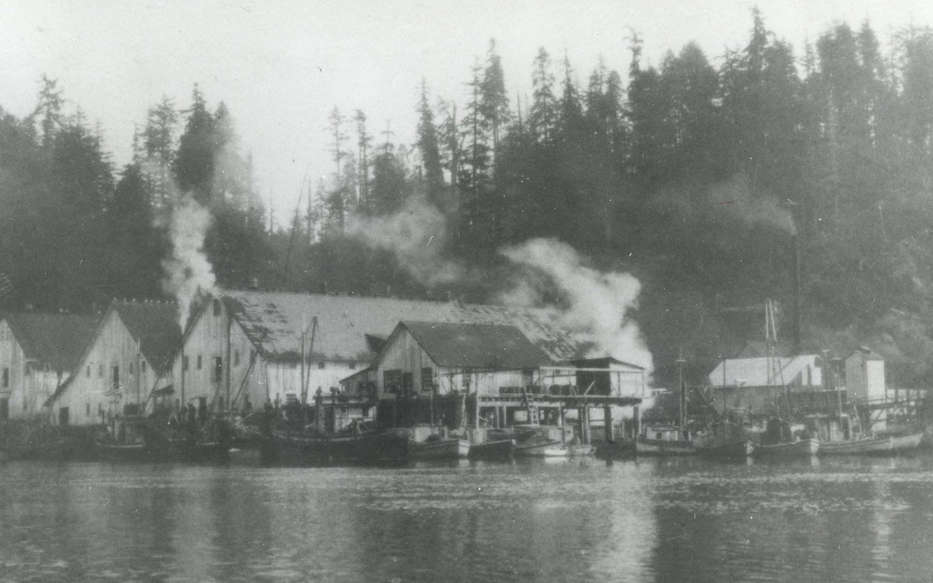 Steam rising from the buildings of the Nitnat Cannery.