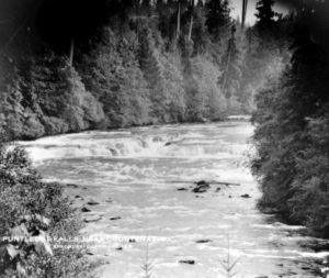 "Puntledge River with treed banks. Typed caption reads ""Puntledge Falls, near Courtenay, B.C."""