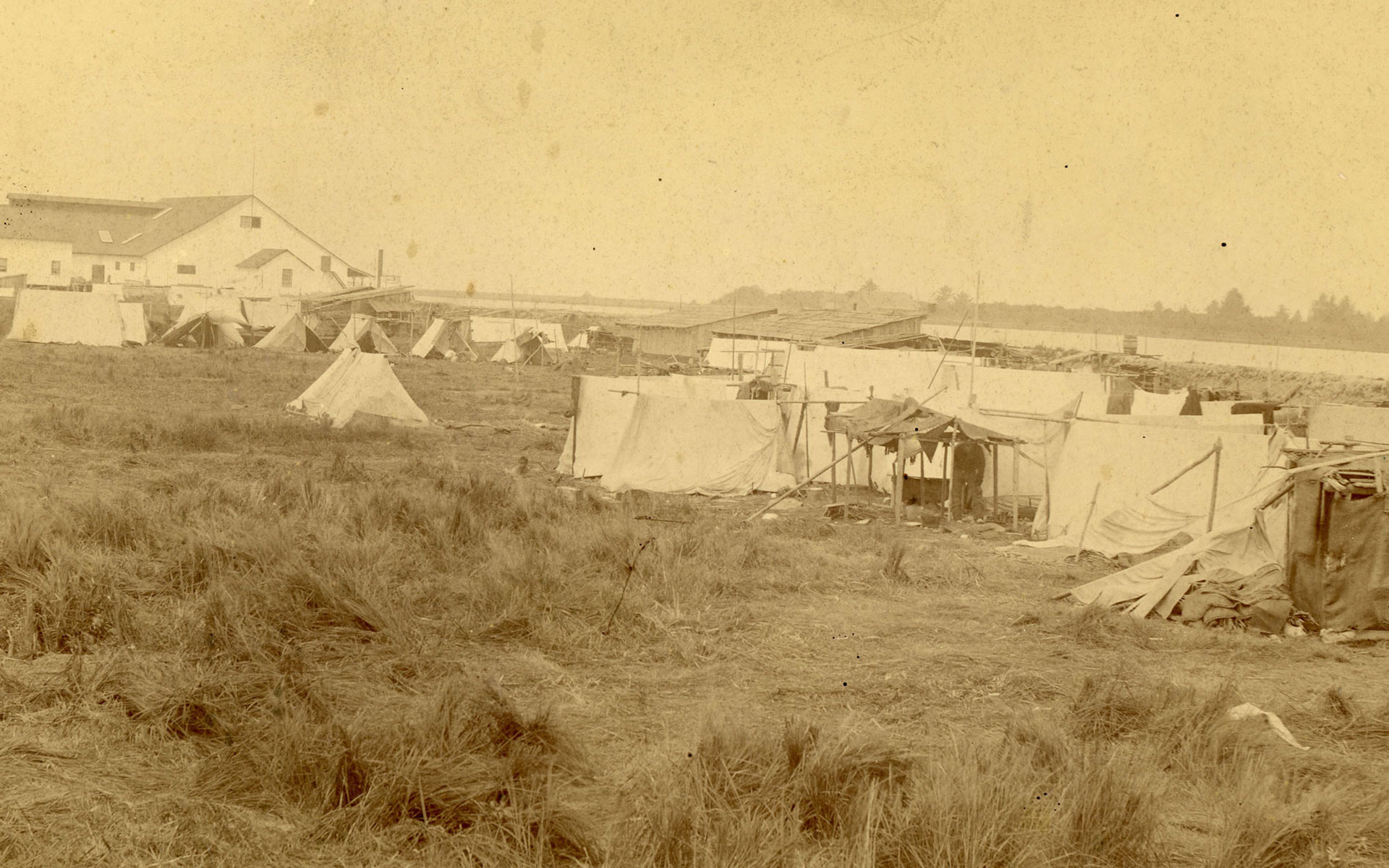 Grouping of tents on a grassy field with a cannery building in the background.