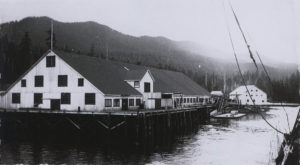 View of the Shannon Bay Cannery from the bow of a boat approaching the cannery.
