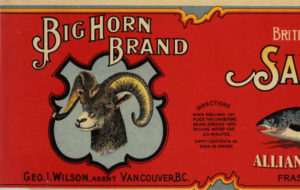 Red can label featuring a drawing of the head of a big horn sheep and a salmon.