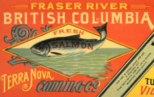 "Gold Ring Brand fresh salmon label for ""Fraser River British Columbia fresh salmon Terra Nova Canning Co., Gold Ring Brand."""