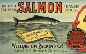 "Salmon can label for the Wellington Packing Co. Text: ""British Columbia salmon Fraser River. Victoria Canning Co. of British Columbia,"" set against images of a salmon and a British soldier."